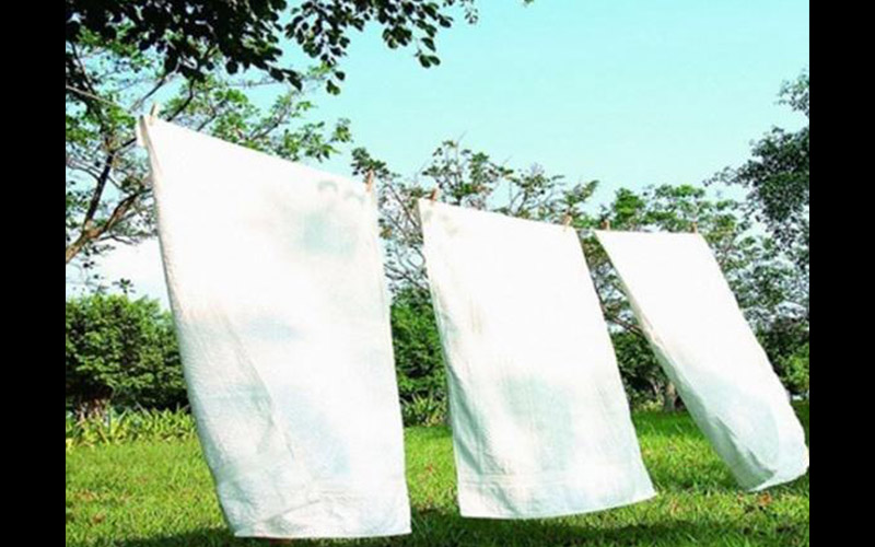 過敏好煩!想要有效去除塵蟎光是曬太陽沒用!專家建議要除塵蟎原來還要...才有用!