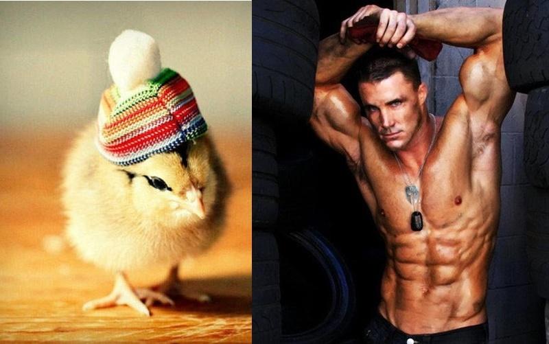 為什麼男生的小弟弟會被稱為「雞雞」?網友神解答讓眾男驚呼:晚上睡覺要關好窗戶啊!  -